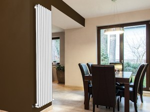 Irsap Ellipsis-V2 radiatore verticale TL220201001IR01A
